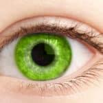 4 couleurs pour faire ressortir les yeux verts