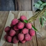 5 étapes pour cultiver un litchi à partir de graines